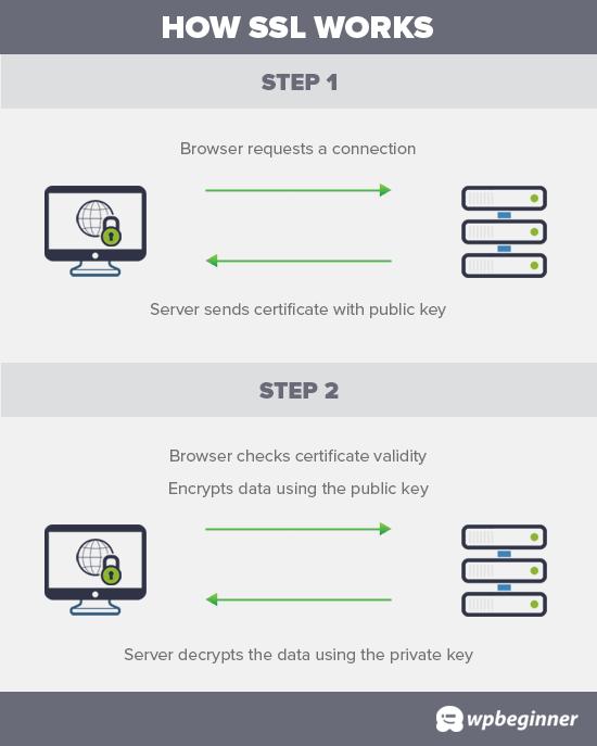 دریافت گواهینامه SSL رایگان برای وب سایت (آموزش مبتدی)