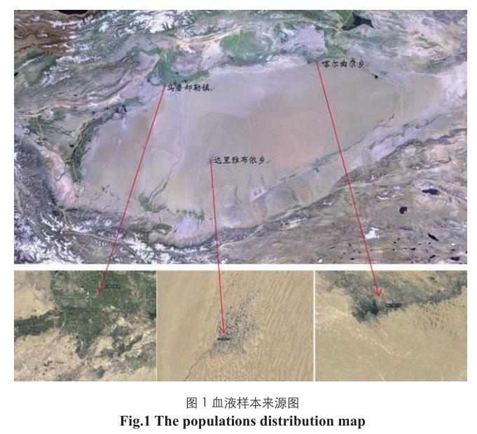 هاپلوگروپ j2 در چین و سینگ کیانگ(ترکستان)