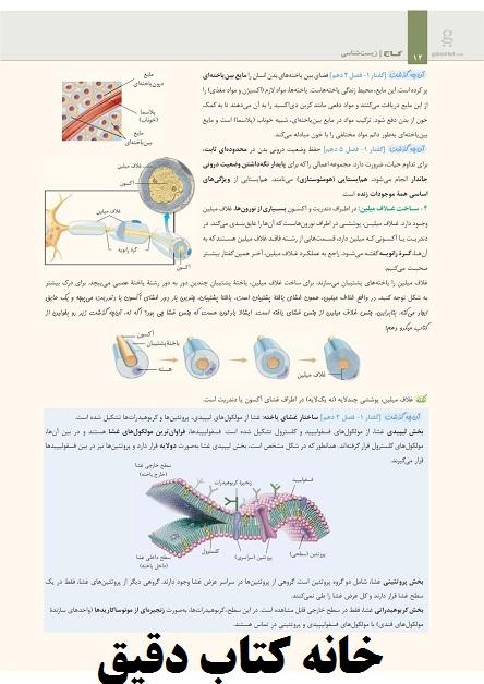 زیست شناسی یازدهم تجربی سری میکرو طبقه بندی