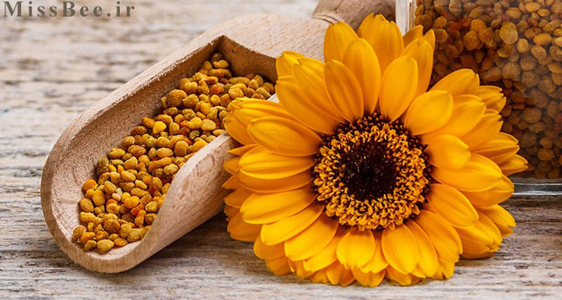 عکس تصویر گرده گل طبیعی